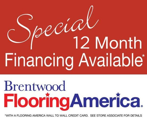 Special 12 Month Financing Available Graphic